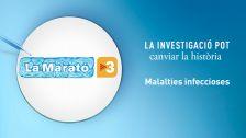 La Marató TV3 capçalera